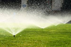Sprinkler Systems Boca Raton